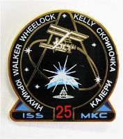 Expedition 25 ISS International Space Station Mission Lapel Pin Official NASA